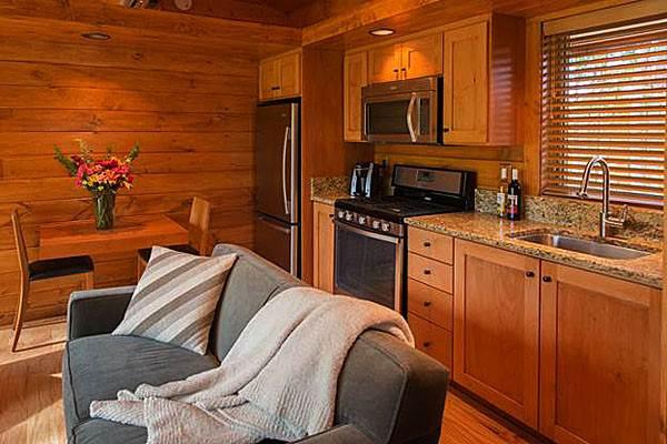 Гостиная, совмещенная кухней в деревянном доме