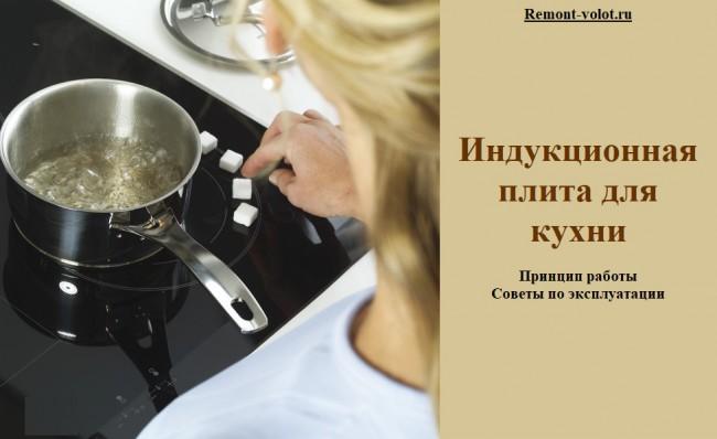 Индукционная плита для кухни